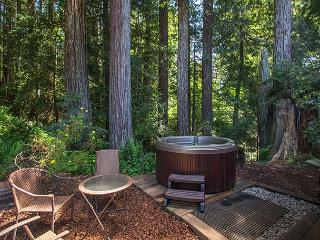 Soak in the hot tub surrounded by Evergreens & ferns and listen to the creek! - Trinidad vacation rentals