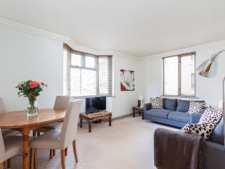 Amazing 2 bed in heart of Mayfair Oxford st - London vacation rentals
