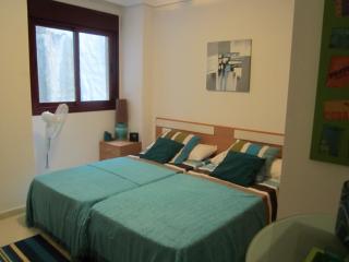 appartement PENISCOLA face à la mer - Peniscola vacation rentals