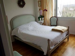 PARIS area, Apt ideally situated for daily visits - Croissy-sur-Seine vacation rentals