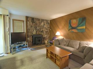 Nice Condo with Deck and Internet Access - Mammoth Lakes vacation rentals
