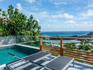 Gorgeous Villa with Internet Access and A/C - Saint Jean vacation rentals