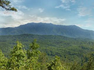 A Majestic View - Pigeon Forge vacation rentals