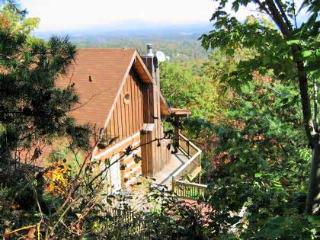 Arrowhead Lodge - Pigeon Forge vacation rentals