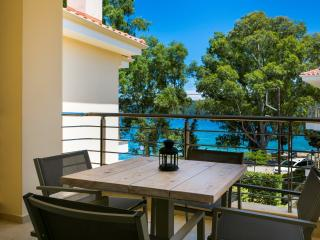 Eucalyptus Apartments - Apartment Nectar - Sami vacation rentals
