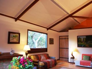 Nice House with A/C and Satellite Or Cable TV - Vassouras vacation rentals