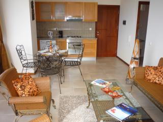 Modern Apartment T1 with Sea-Mountain View - Ponta Do Sol vacation rentals