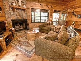 Laughing Hippo, 2 Bedrooms, Blue Ridge - Ellijay - Ellijay vacation rentals