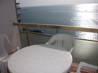 1011 MEDA CHICA - Roses vacation rentals