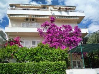 TH00712 Apartments Ruzica /  A2 One bedroom - Makarska vacation rentals