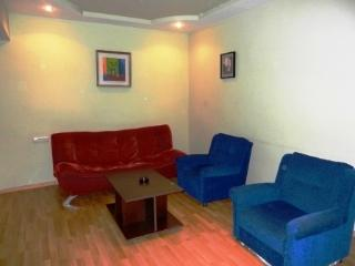 Nice Apartment Next to Republic Square - Yerevan vacation rentals
