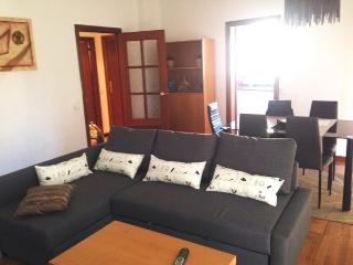 3 bedrooms apartment plaza espanya Barcelona - Barcelona vacation rentals