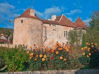 Gîte : Château Médiéval les Hirondelles de Gurgy - Recey-sur-Ource vacation rentals