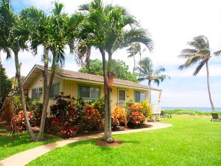 Charming Cottage with Internet Access and A/C - Paia vacation rentals