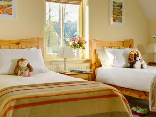 Lovely Kenmare House rental with Garden - Kenmare vacation rentals