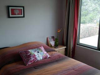 RIO CARIBE CASA - Guanajuato vacation rentals