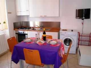 Nice 1 bedroom Imperia Apartment with Television - Imperia vacation rentals