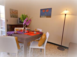 Comfortable 1 bedroom Apartment in Diano Marina with Television - Diano Marina vacation rentals