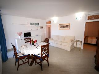 Lovely 2 bedroom Apartment in Imperia with Television - Imperia vacation rentals