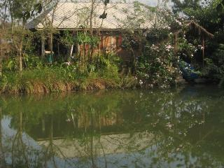 Lakeside Bungalow in Nature 15 km to City - Doi Saket vacation rentals