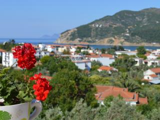 Charming 1 bedroom Condo in Skopelos - Skopelos vacation rentals