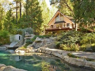 SlideRock Retreat - Grass Valley vacation rentals