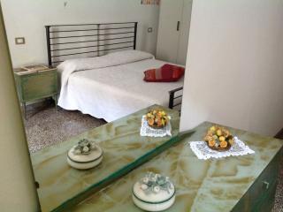 Apartment in the historical centre of Sarzana - Sarzana vacation rentals