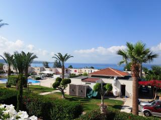 Coral Bay - 1 Bed Apartment Prime Tourist Location - Paphos vacation rentals