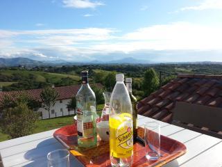 Gîte T3 pays basque vue montagnes et piscine - Halsou vacation rentals