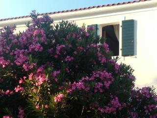 Holiday home, apartment for 2 persons - Kornic vacation rentals