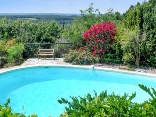 House with pool by idyllic village - Bruniquel vacation rentals