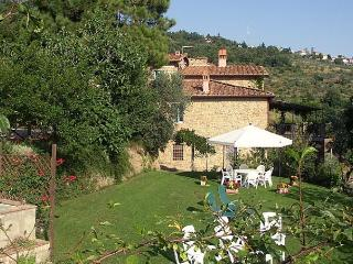 I Camini - Castelfranco di Sopra vacation rentals