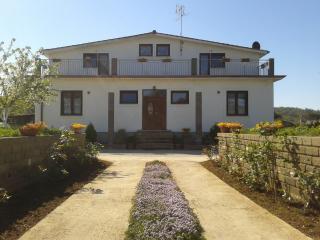 Splendida villa immersa nel verde - Manziana vacation rentals