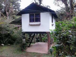 Cozy 2 bedroom House in Visconde de Maua with Television - Visconde de Maua vacation rentals