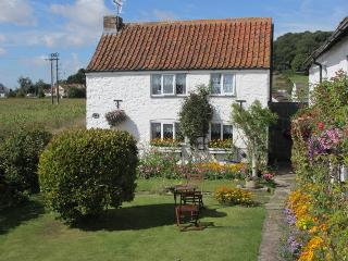 Comfortable 1 bedroom Cottage in Bleadon - Bleadon vacation rentals