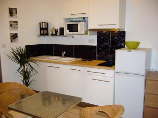 1 bedroom Condo with Internet Access in Montpellier - Montpellier vacation rentals