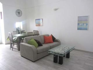 casa ary vista mare in centro - Vieste vacation rentals