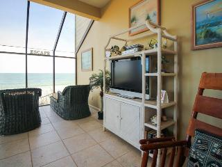 Walk your dog on the beach or take in the view from your oceanfront condo! - Saint Augustine vacation rentals