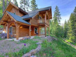Rustic dog-friendly cabin with a wood stove and mountain views - Sagle vacation rentals