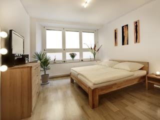Nice Condo with Internet Access and Television - Regensburg vacation rentals