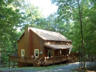 Lovely House with Shared Outdoor Pool and Grill - Ellijay vacation rentals