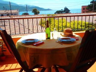Gorgeous Apartment with Tennis Court and Satellite Or Cable TV in Calcatoggio - Calcatoggio vacation rentals