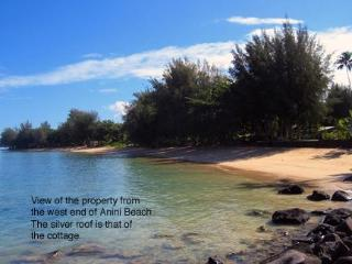 Charming Cottage with Internet Access and Outdoor Dining Area - Kauai vacation rentals
