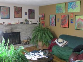 home/art gallery/ working studio - Abingdon vacation rentals
