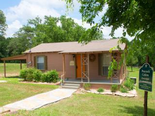 Nice Cottage with Internet Access and A/C - Gatesville vacation rentals