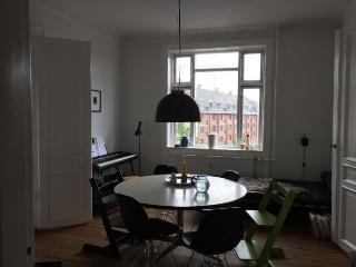 Well maintained Copenhagen apartment near central st - Copenhagen vacation rentals