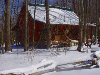 Creekside Cabin With Hot Tub, WiFi, FIre Pit and Pet Friendly! - Todd vacation rentals