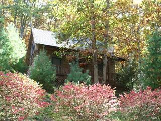 Cabin With WiFi, Fireplace & Fenced In Yard! - Fleetwood vacation rentals