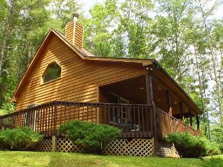 Enjoy Cool Temps At This Charming Log Cabin In The Mountains! - Fleetwood vacation rentals