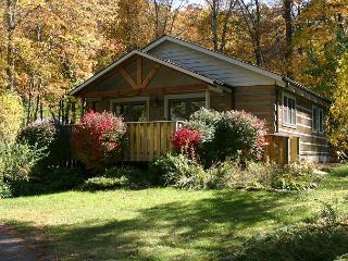 Creekside Cabin with bubbling hot tub, WIFI, Fireplace & Pets Welcome! - Fleetwood vacation rentals